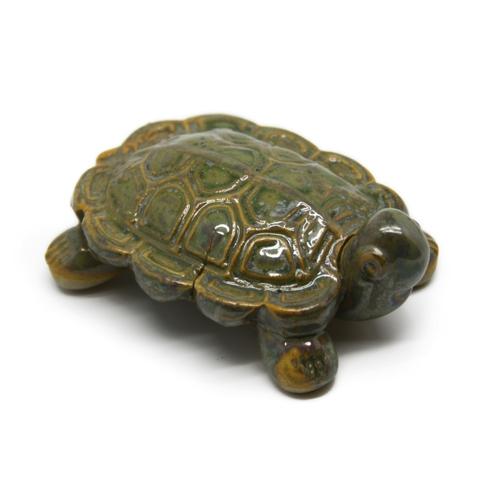 turtle0014g